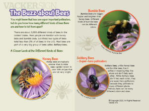Bee Outdoor Education Sign