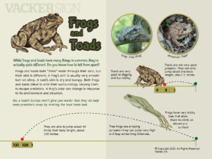Frogs and Toads Outdoor Education Sign