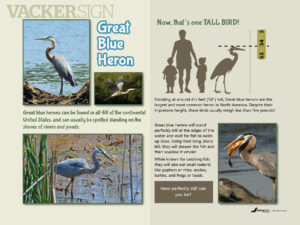 Great Blue Heron Outdoor Education Sign