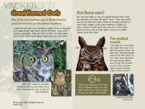 Great Horned Owl Nature Education Sign