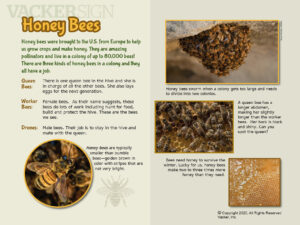 Honey Bee Outdoor Education Sign
