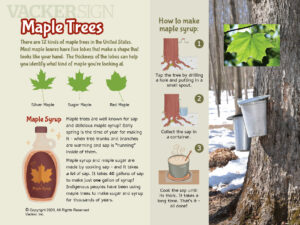 Maple Tree Outdoor Education Sign