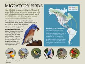 G21-7 Migratory Birds semi-custom interpretive sign