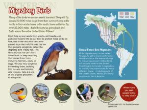 Migratory Bird Nature Education Sign