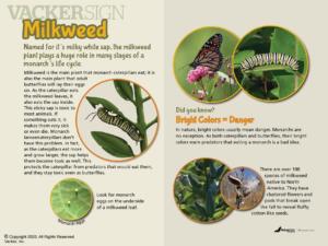 Milkweed Nature Education Sign