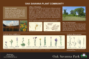 Custom oak savanna habitat interpretive panel layout