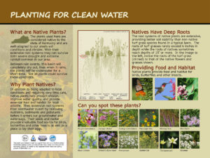 Custom native plant and clean water interpretive panel