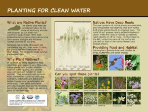 Custom Clean Water Interpretive Sign