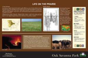 Custom prairie habitat interpretive panel layout