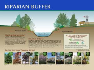 Custom riparian buffer interpretive sign panel