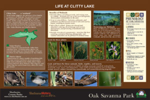 Custom wetland habitat interpretive panel layout