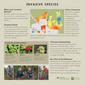 Forest Park Invasive Species interpretive sign