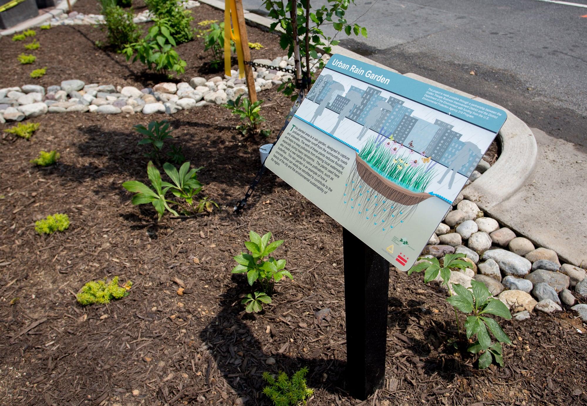 Rain Garden sign