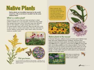 NW-1 Native Plants educational sign